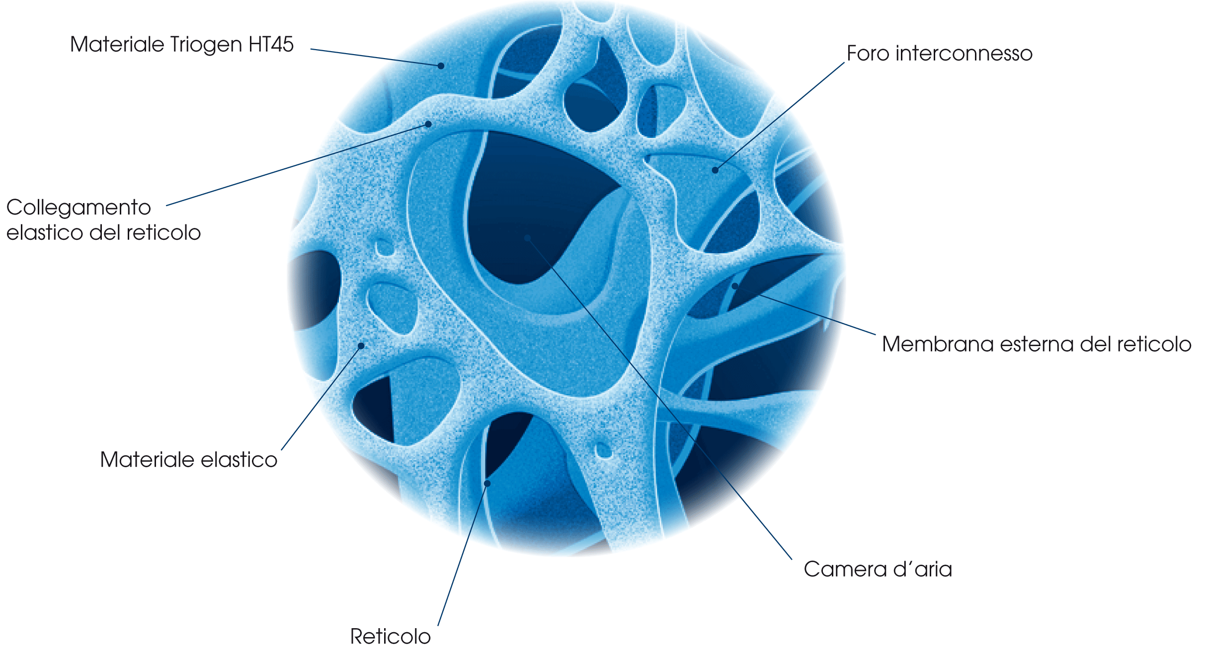 cellula-microscopio